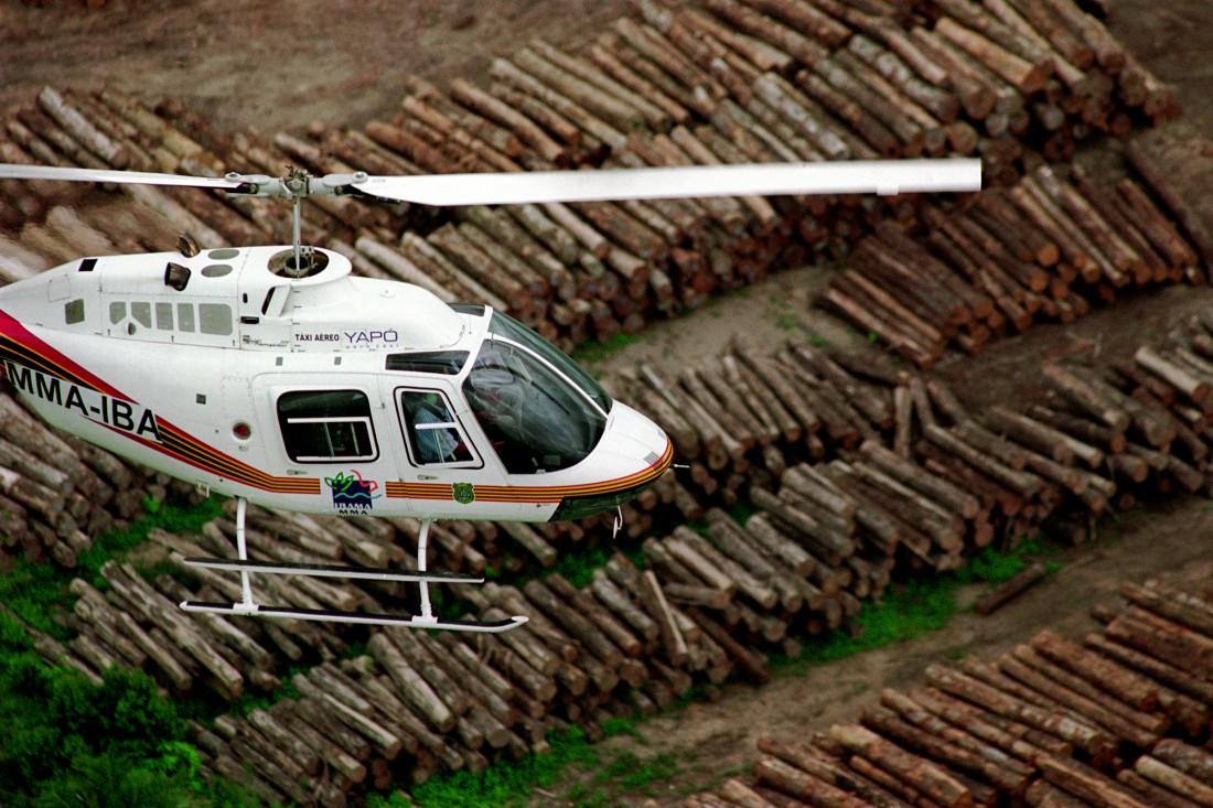 Preso grileiro responsável por 20% do desmatamento daAmazônia