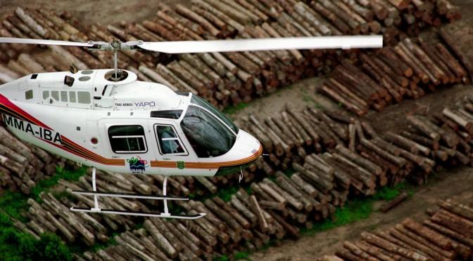 Preso grileiro responsável por 20% do desmatamento da Amazônia
