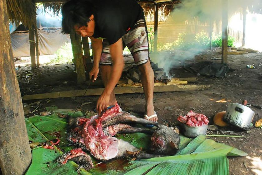 Kayapó prepara caça para o almoço - Foto Bepunu Kayapó