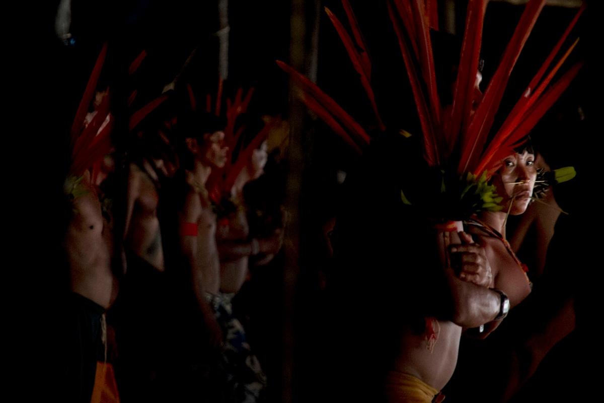 Sangue dos Yanomami volta aoBrasil