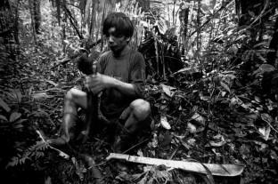 Índios Werekena da comunidade de Anamoim no alto rio Xié trabalham com a piaçava (Leopoldínia pÌassaba Wall). A fibra, um dos principais produtos geradores de renda na região é coletada de forma rudimentar, sendo utilizada na fabricação de cordas , chapéus, artesanato e vassouras, Alto rio Xié, fronteira do Brasil com a Venezuela a cerca de 1.000Km oeste de Manaus. 06/06/2002. ©Foto: Paulo Santos/