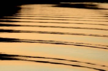 Pequenas embarcações regionais navegam pelo rio Erepecuru; na bacia do rio Trombetas, transportando moradores e produtos para os territórios quilombolas e indígenas. cujos habitantes sofrem forte pressão da indústria mineral, com a retirada de bauxita pela Mineração Rio do Norte, o comércio ilegal dos madeireiros além do Plano Nacional de Energia 2030, e seus projetos de 15 hidrelétricas para Bacia do Trombetas.Oriximiná, Pará, Brasil.Foto Paulo Santos 28/09/2016