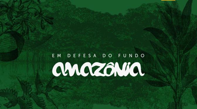 O Fundo vai pro brejo na Amazônia.